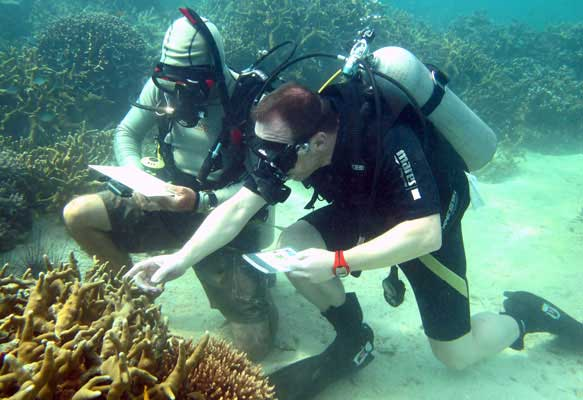 Underwater teaching