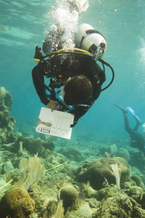 Collecting data underwater