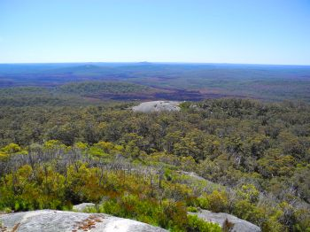 View over the Walpole Wilderness study site from Mt Franklin.
